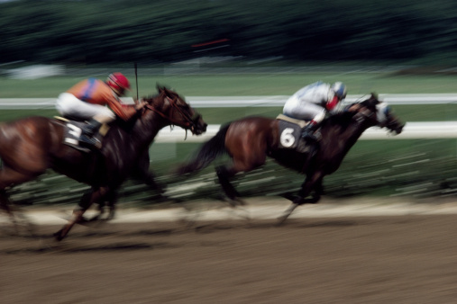 The secret to profiting from lay bets – Maria's back! - What
